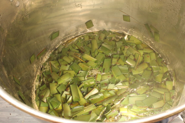 boiling flax pieces