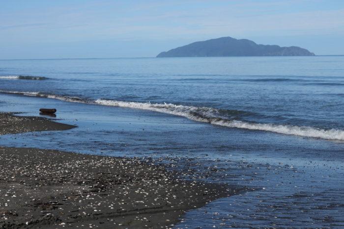 Otaki Beach Walk