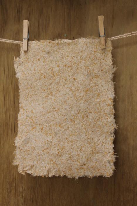 finished flax paper by Birgit Moffatt