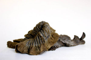 sculptural felt by Birgit Moffatt