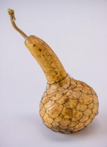 gourd by Birgit Moffatt